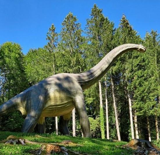 Le Dino-Zoo